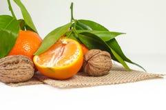 Mandarinas y nueces Fotos de archivo libres de regalías