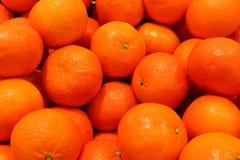 Mandarincloseup citrus klar text för bakgrund bär fruktt orange moget Saftig mandarinclementine bär fruktt tropiskt Royaltyfri Bild