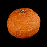 Mandarine Stock Photo