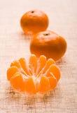Mandarine#15. Citrus plants, fruit, mandarin, peel, plants, tangerine Stock Images
