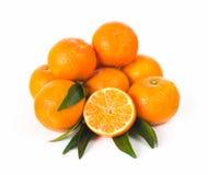 Mandarine lizenzfreies stockfoto