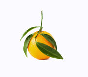Mandarine. With leafs on white background Royalty Free Stock Photos