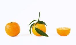 mandarine Arkivbild