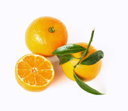 Mandarine. With leafs on white background Stock Photos