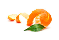 Mandarine lizenzfreie stockbilder