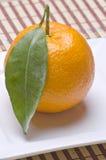 Mandarine Stock Photo