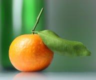 Mandarine Stock Image