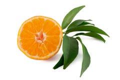 Mandarine auf weißem Hintergrund Stockfotos