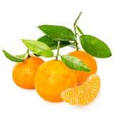 Mandarine avec des segments photographie stock