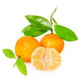 Mandarine avec des segments images stock