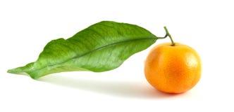 Mandarine avec la lame d'isolement sur le fond blanc Image libre de droits