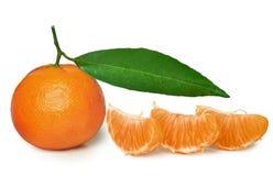 Mandarine avec la lame verte Photo libre de droits