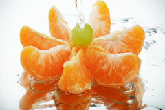 Mandarine de l'eau Photo libre de droits