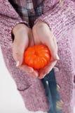 Mandarine in den Händen des Mädchens Lizenzfreie Stockbilder