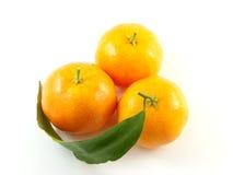 Mandarine drei mit dem Blatt getrennt auf weißem backgro Lizenzfreies Stockfoto