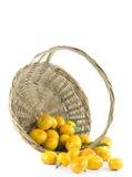 Mandarine in einem Korb Lizenzfreies Stockbild