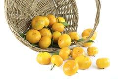 Mandarine in einem Korb Stockfoto
