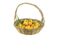 Mandarine in einem Korb Stockfotografie