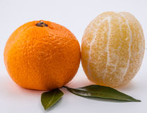 Mandarine et citron sur le fond blanc Photos libres de droits