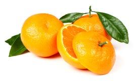 Mandarine fraîche avec des lames Images stock
