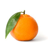 Mandarine fraîche d'isolement photos stock