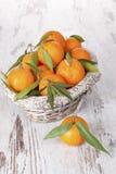 Mandarine fruit, provence style. Stock Images