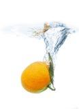 Mandarine fruit in water Royalty Free Stock Photos