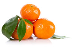 Mandarine fruits Royalty Free Stock Photo