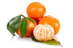 Mandarine fruits Royalty Free Stock Images