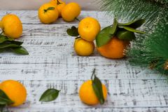 Mandarine fruits and christmas tree branches over rustic wooden background stock images