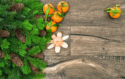 Mandarine fruits and christmas tree branches. Tangerine. On wooden background royalty free stock photos