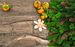 Mandarine fruits and christmas tree branches Stock Photo