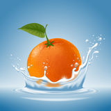 Mandarine im Wasserspritzen Stockfotos