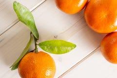 Mandarine with a leaf on grey wood. Group of four whole fresh orange mandarine with green leaves flatlay on white wood stock photos