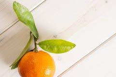 Mandarine with a leaf on grey wood. One whole fresh orange mandarine with green leaves flatlay on white wood stock photo