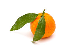 Mandarine mûre Images stock