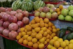 Mandarine-melons de tomates d'oranges de pommes de fruits et légumes Image libre de droits