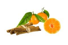 Mandarine mit Blättern und Zimt Lizenzfreies Stockfoto