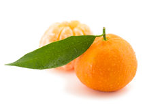 Mandarine mit Blatt stockfotografie
