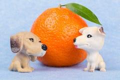 Mandarine mit Blatt und zwei Hunden stockfoto
