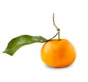 Mandarine mit den Blättern, getrennt auf Weiß Stockfotografie
