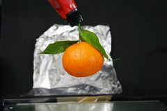 Mandarine mit drei Blättern fotografiert Lizenzfreies Stockbild