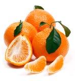Mandarine mit grünen Blättern lizenzfreie stockfotos