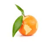 Mandarine mit Karte der Welt lizenzfreie stockbilder