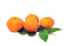 Mandarine op wit wordt geïsoleerd dat Stock Foto