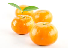 Mandarine orange. Ripe mandarin citrus  tangerine mandarine orange on white background Royalty Free Stock Image