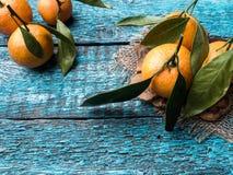 Mandarine ou mandarine fraîche de tiges et de feuilles sur l'espace en bois bleu de copie de fond Photos stock