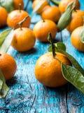 Mandarine ou mandarine fraîche de tiges et de feuilles sur la configuration en bois bleue d'appartement de fond Image libre de droits