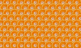 Mandarine plakken royalty-vrije stock foto