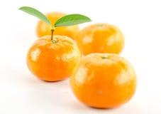 Mandarine pomarańcze Obraz Royalty Free